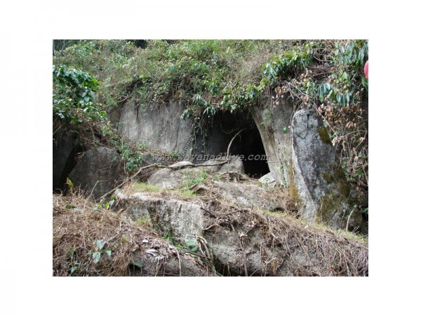 caves in wayanad