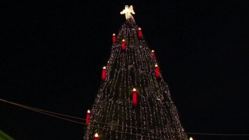 the biggest christmas in the world has been lighten up in germany the 150 feet tall adorned tree can be viewed at the german city of dortmund - Biggest Christmas Tree In The World