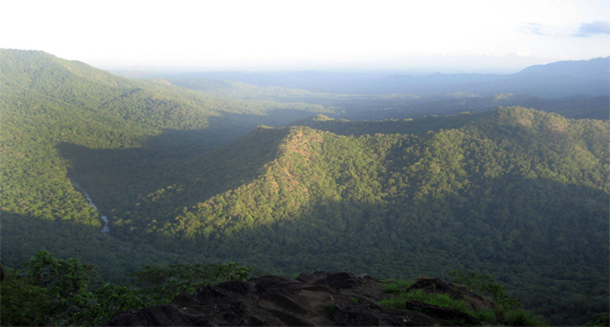 viewpoints in wayanad