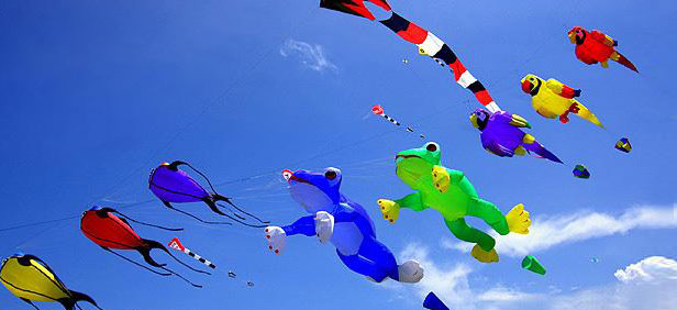 India Celebrations And Festivals Kite Festival in India is