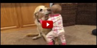 Adorable Babies And Cute Dogs Compilation...
