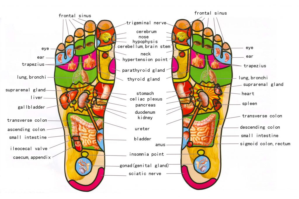 foot-reflexology (1)