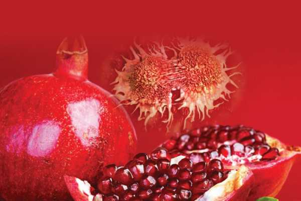 pomegranate-is-effective-against-prostate-cancer3